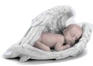 Infant Caskets and Urns | Heaven's Gain | (513) 607-6083 Logo